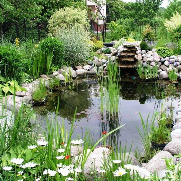 Что сделать в саду своими руками фото