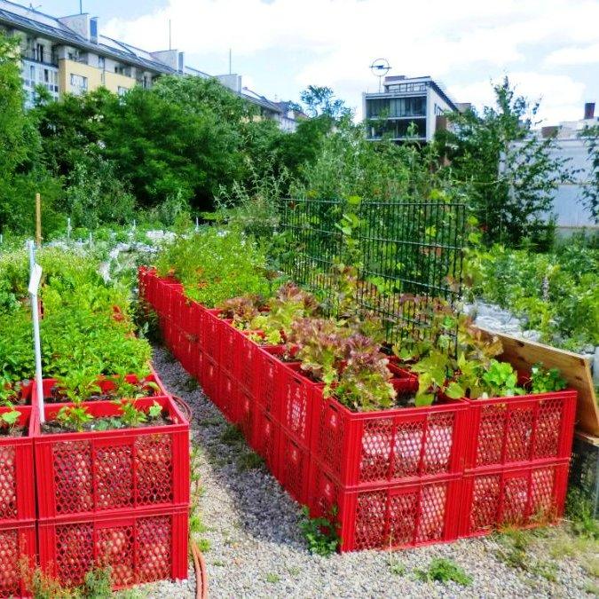 Удобный огород своими руками