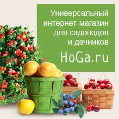 Интернет-магазин hoga.ru