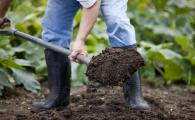 Весенняя подготовка почвы на огороде