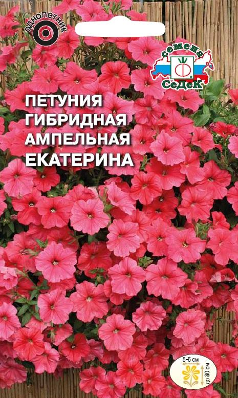 Сорта ампельных цветов с